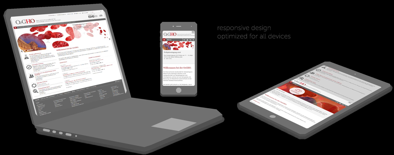 OeGHO_responsive